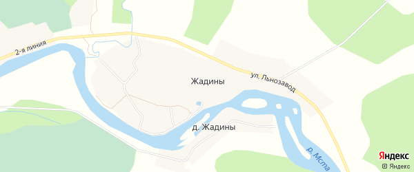 Карта деревни Жадины в Новгородской области с улицами и номерами домов