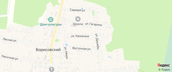 Улица Калинина на карте Борисовского поселка Тверской области с номерами домов