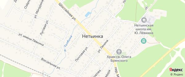 10-й Шоссейный проезд на карте поселка Нетьинки с номерами домов