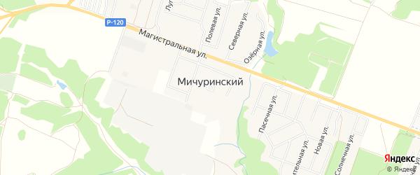 Карта Мичуринского поселка в Брянской области с улицами и номерами домов