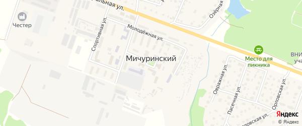 Пригородная улица на карте Мичуринского поселка с номерами домов