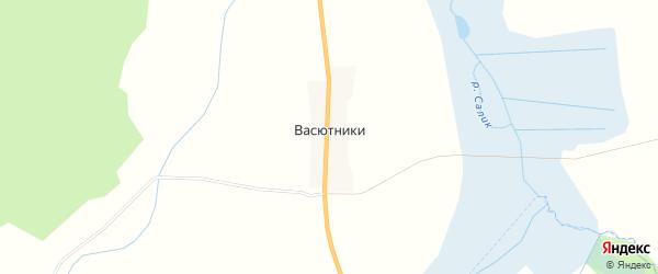 Карта деревни Васютники в Смоленской области с улицами и номерами домов