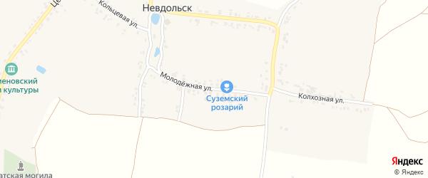 Молодежная улица на карте села Невдольска с номерами домов