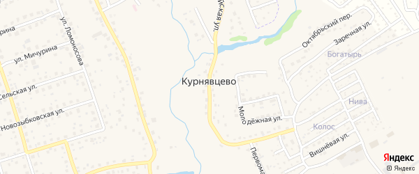 Вишневая улица на карте деревни Курнявцево Брянской области с номерами домов