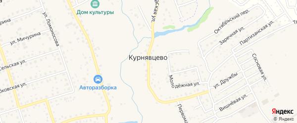 Крымская улица на карте деревни Курнявцево с номерами домов