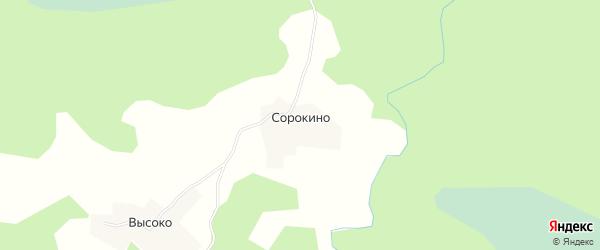 Карта деревни Сорокино в Новгородской области с улицами и номерами домов