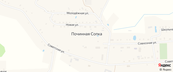 Лесной переулок на карте деревни Починной Сопки Новгородской области с номерами домов