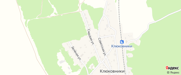 Садовая улица на карте поселка Клюковники с номерами домов