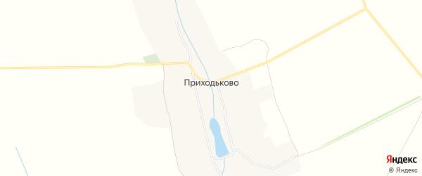 Карта деревни Приходьково в Курской области с улицами и номерами домов