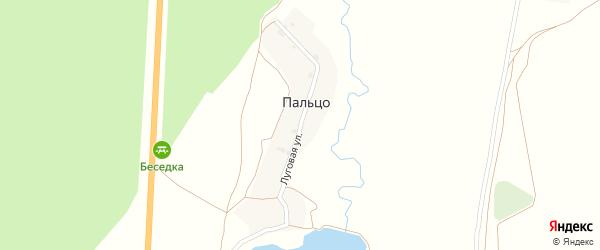 Луговая улица на карте поселка Пальца с номерами домов