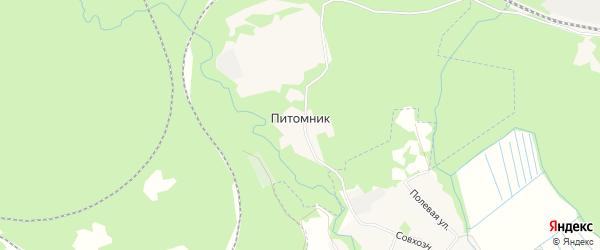 Карта поселка Питомника города Медвежьегорска в Карелии с улицами и номерами домов