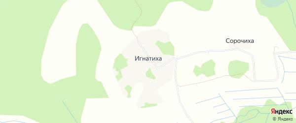 Карта деревни Игнатихи города Вышнего Волочка в Тверской области с улицами и номерами домов