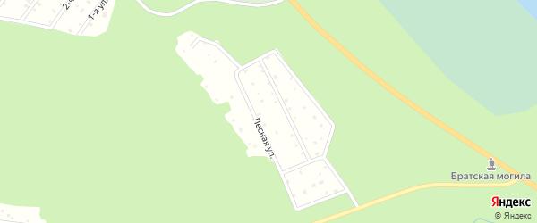 Рябиновый переулок на карте садового некоммерческого товарищества Дорожник (Деревянское с/п) Карелии с номерами домов