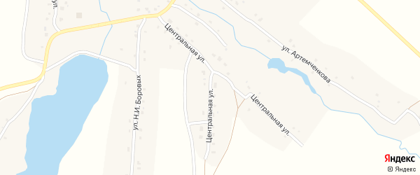 Центральная улица на карте села Аркино с номерами домов