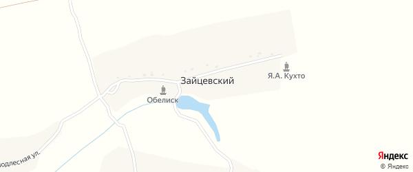 Улица Имени Синикова на карте Зайцевского поселка с номерами домов