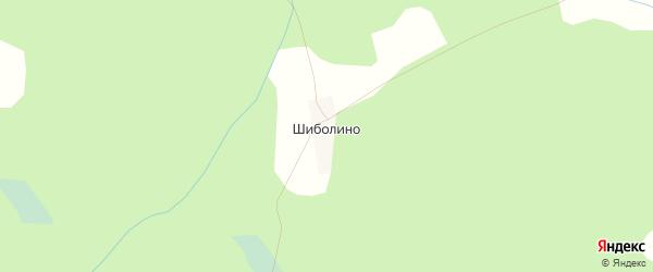 Карта деревни Шиболина города Удомли в Тверской области с улицами и номерами домов