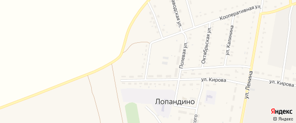 Улица Александра Губина на карте поселка Лопандино с номерами домов