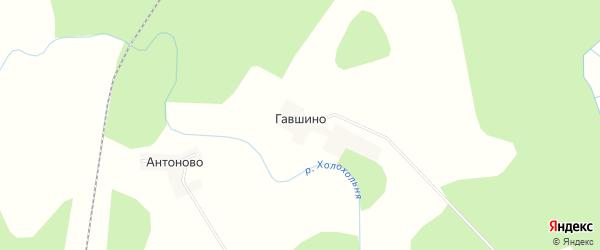 Карта деревни Гавшино в Тверской области с улицами и номерами домов