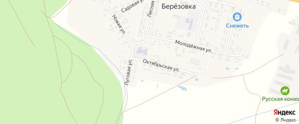 Октябрьская улица на карте поселка Березовки с номерами домов