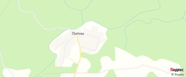 Карта деревни Липны города Удомли в Тверской области с улицами и номерами домов