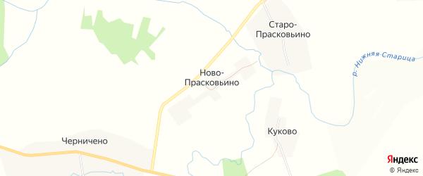 Карта деревни Ново-Прасковьино в Тверской области с улицами и номерами домов