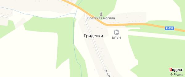 Улица Свободы на карте деревни Гриденки Калужской области с номерами домов