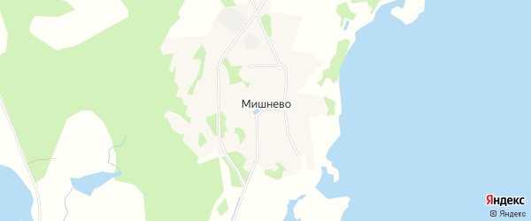 Карта деревни Мишнево города Удомли в Тверской области с улицами и номерами домов