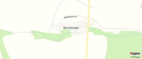 Медовая улица на карте деревни Битюково Смоленской области с номерами домов