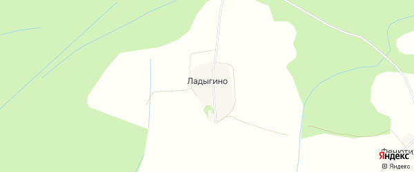 Карта деревни Ладыгино в Тверской области с улицами и номерами домов