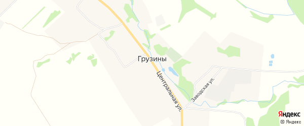 Карта деревни Грузины в Тверской области с улицами и номерами домов