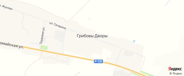 Карта деревни Грибовы Дворы в Брянской области с улицами и номерами домов