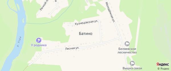 Лесная улица на карте деревни Батино Калужской области с номерами домов