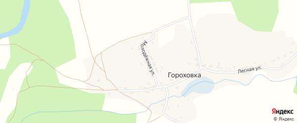 Молодежная улица на карте деревни Гороховка Калужской области с номерами домов