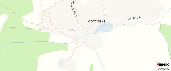 Заречный переулок на карте деревни Гороховка Калужской области с номерами домов