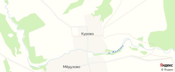 Карта деревни Курово в Тверской области с улицами и номерами домов