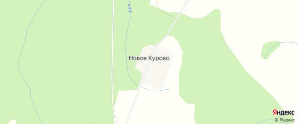 Карта деревни Новое Курово в Тверской области с улицами и номерами домов