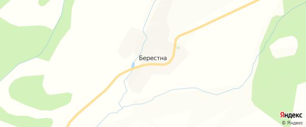 Карта села Берестна в Калужской области с улицами и номерами домов