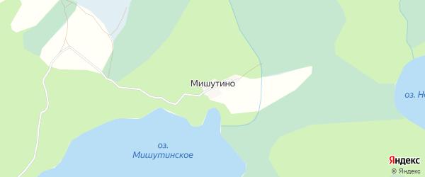 Карта деревни Мишутино города Удомли в Тверской области с улицами и номерами домов