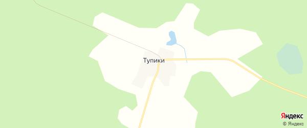 Карта деревни Тупиков города Удомли в Тверской области с улицами и номерами домов