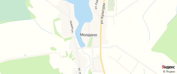 Карта села Молдино города Удомли в Тверской области с улицами и номерами домов