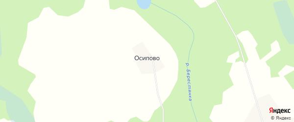 Карта деревни Осипово (Богословское с/п) в Новгородской области с улицами и номерами домов