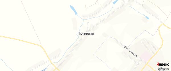 Карта деревни Прилепы в Курской области с улицами и номерами домов