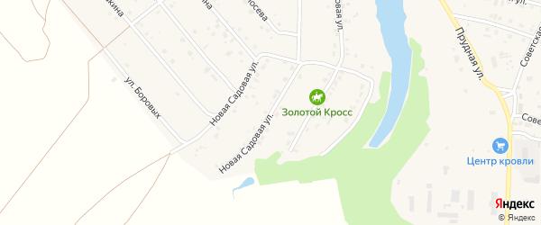 Новая Садовая улица на карте села Разветье Курской области с номерами домов