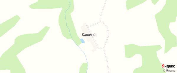 Карта деревни Кашино в Калужской области с улицами и номерами домов