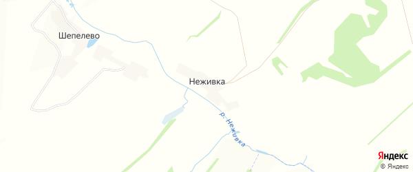 Карта деревни Неживки в Орловской области с улицами и номерами домов