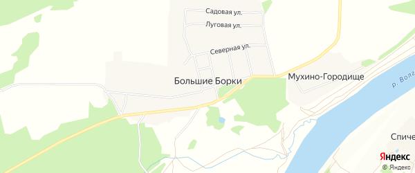 Карта деревни Большие Борки в Тверской области с улицами и номерами домов