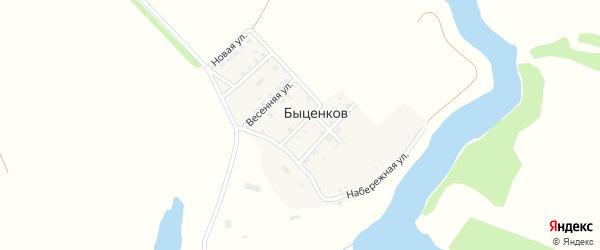Центральная улица на карте поселка Быценкова с номерами домов