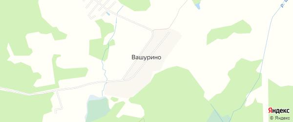 Территория садоводческого некоммерческого товарищества Весна на карте деревни Вашурино с номерами домов