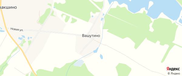 Карта деревни Вашутино в Тверской области с улицами и номерами домов