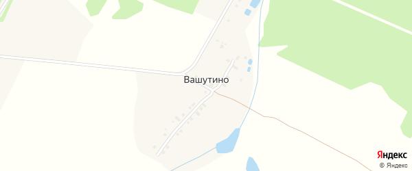 Молодежная улица на карте деревни Вашутино Тверской области с номерами домов